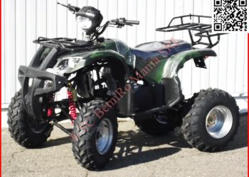 ATV BIG Mega Grizzly FARMER 250cc cu trepte si bord electronic