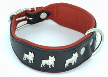 Zgarda piele Luxury French Bulldog