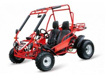 Buggy Cross 200 cc
